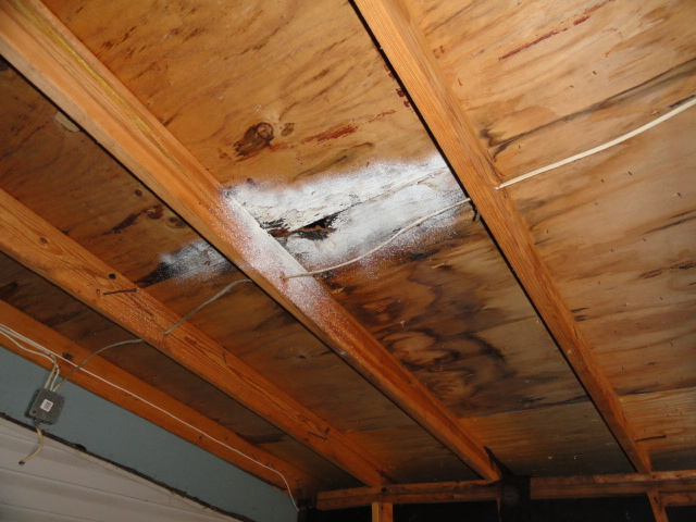 Roof Sheathing With Water Damage And Mold Like Substance